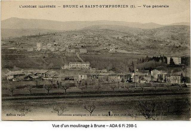 Brune1 1
